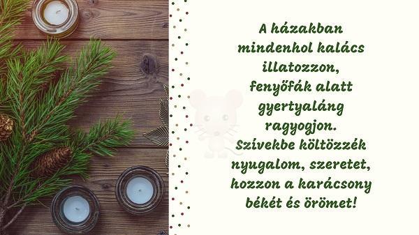 Karácsonyi üdvözlet #1