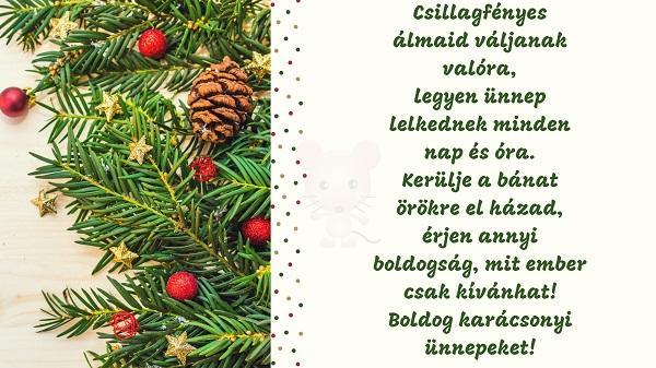 Karácsonyi üdvözlet #12