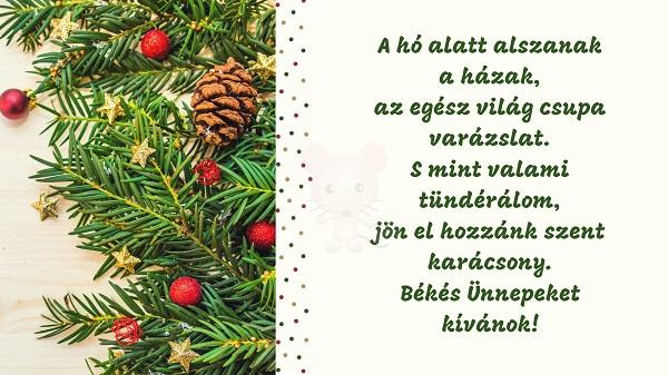 Karácsonyi üdvözlet #2