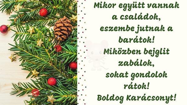 Karácsonyi üdvözlet #30