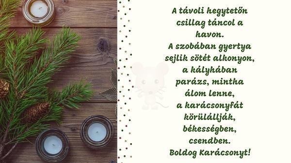 Karácsonyi üdvözlet #7