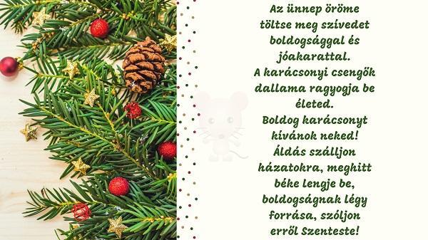 Karácsonyi üdvözlet #8